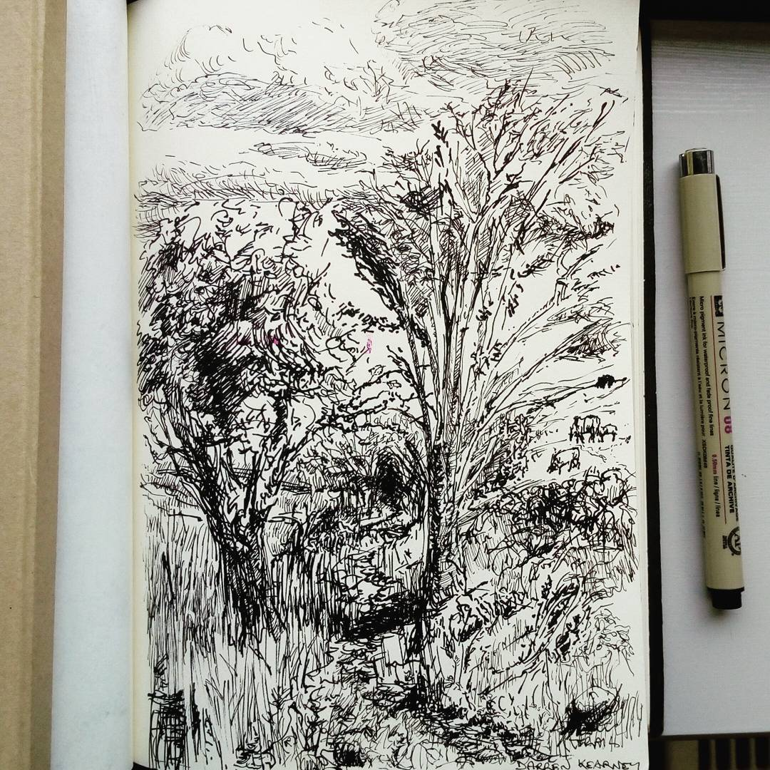 Inktober - Trail ink drawing by Darren Kearney (@darrencearnaigh). Show's a trail along a waters edge treeline into a forest. Done during the 1GAM Galway Jam